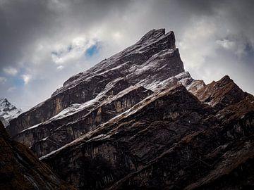Künstlicher Berg von Rik Pijnenburg