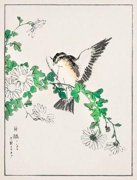 Narzissenschnäpper und Chrysanthemen-Illustration von Numata Kashu (1838-1901). von Studio POPPY