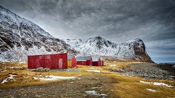 Winterlandschap met rode schuren op de Lofoten in noord Noorwegen van Chris Stenger