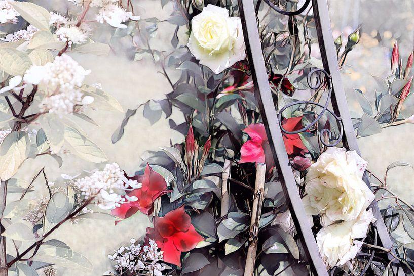 Rosenranke Aquarellmalerei rot-weiß von Patricia Piotrak