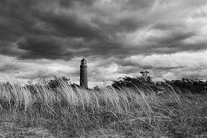 Leuchtturm Darßer Ort schwarz-weiß