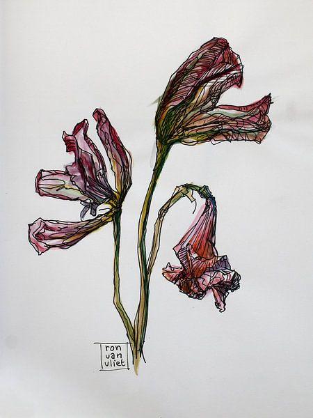 Tote Blumen 1 von Ron van Vliet