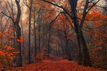 Dekorative Wald, Anton van Dongen von 1x