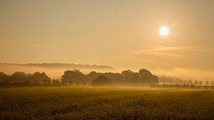 Landschap met zonsopkomst van Carola Schellekens
