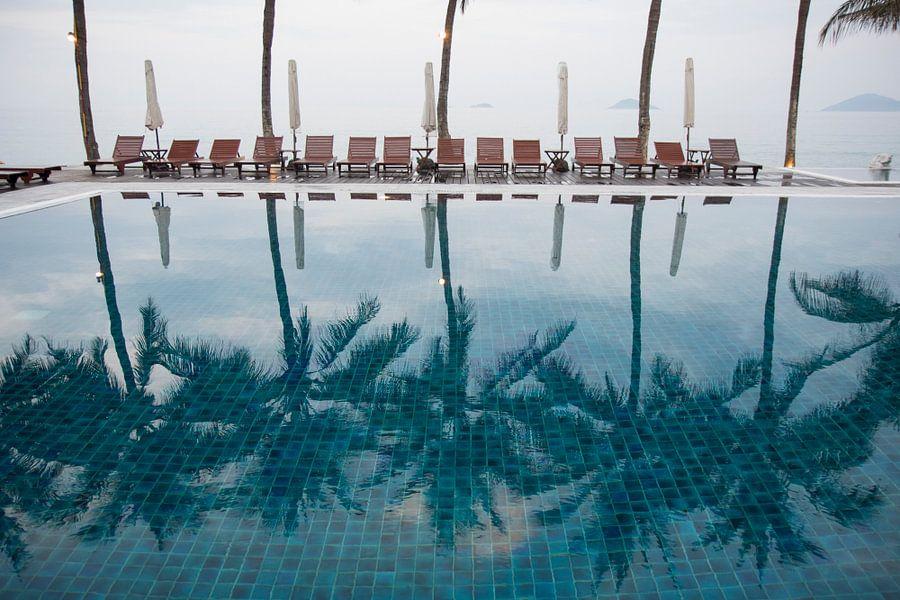 Palmbomen weerspiegeld