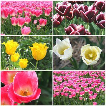 Collage tulpen, lente van Inge Hogenbijl