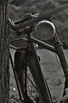 oude fiets tegen boom van José Batterink