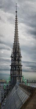Notre Dame Spire van Keith Wilson Photography