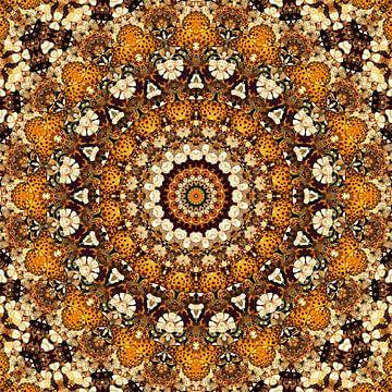 Kaleidoscope Butterflies sur Bright Designs