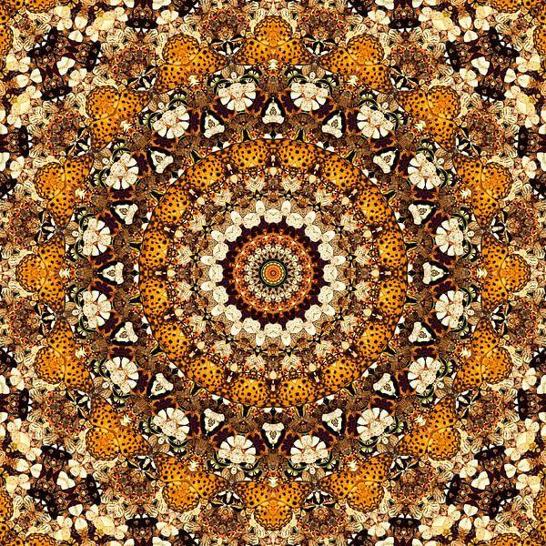 Kaleidoscoop Vlinders van Bright Designs