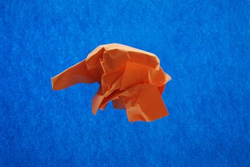 Blauw oranje van Brigitte van Ark