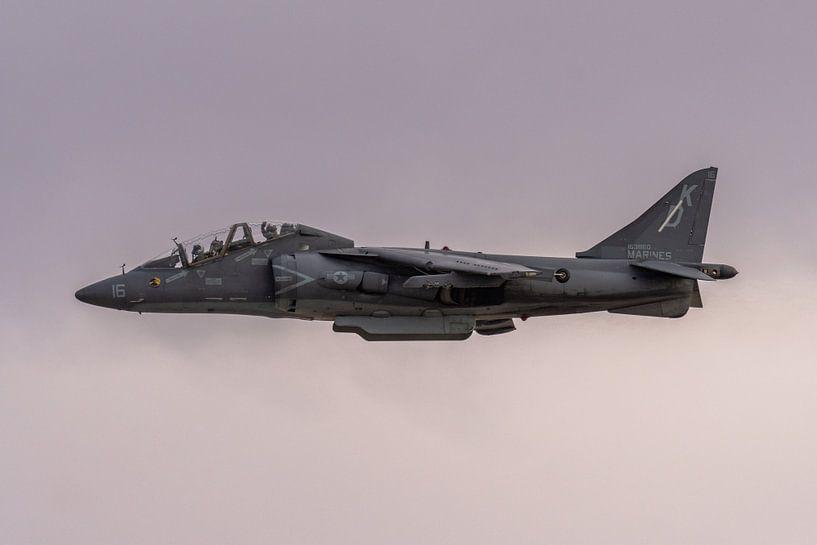 I love it loud! The sound of freedom. Een McDonnell Douglas TAV-8B Harrier II in de landing bij MCAS van Jaap van den Berg