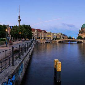 Berliner Skyline an der Spree von Frank Herrmann