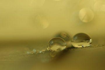 Green drops von Carla Mesken-Dijkhoff