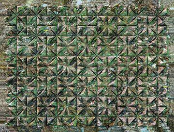 Relief G3 Moosigen Wald von Frans Blok