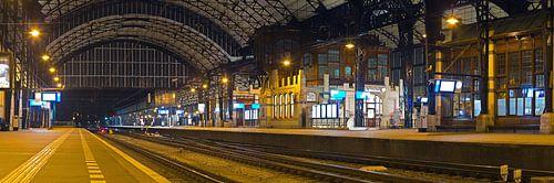 Panorama station Haarlem van Anton de Zeeuw