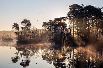 Zonneharpen bij zonsopkomst boven een meer
