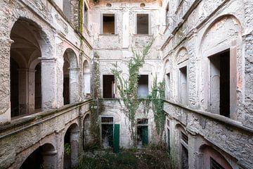 Verlassener Innenhof mit Pflanzen. von Roman Robroek
