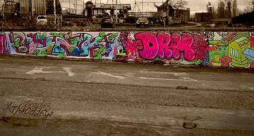 NDSM-werf oude scheepswerf dok graffitimuur van Coco Gonzalez