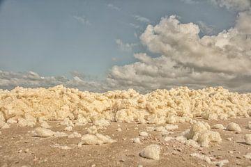 des têtes blanches dans les nuages sur anne droogsma