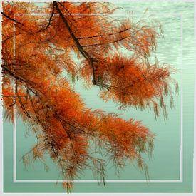 dreamlike red tree II von Bernd Hoyen