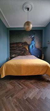 Klantfoto: Troste pauw van Claudia Moeckel