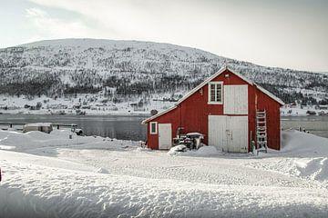 Rood Huis In De Sneeuw In Noorwegen van Henrike Schenk