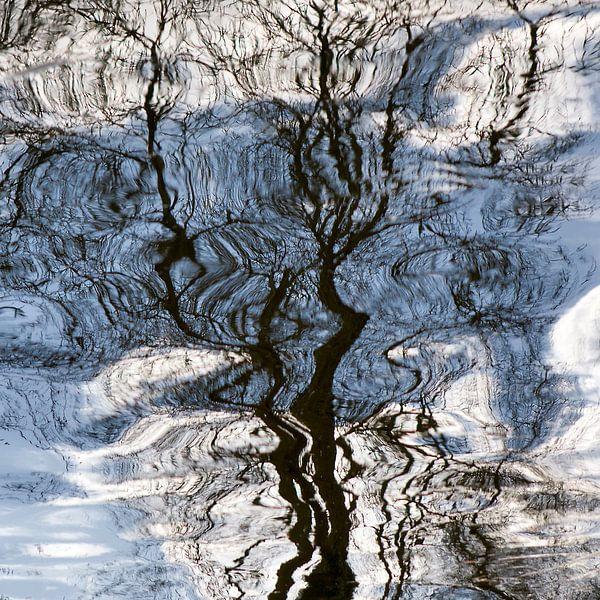 Boom spiegelend in water van Fokje Otter