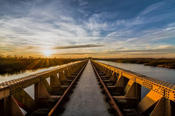 De Moerputtenbrug in Den Bosch van MS Fotografie