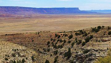 Canyon Look Arizona von Marek Bednarek