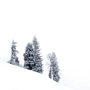 Sneeuwwit landschap in Zwitserland sur Martijn van der Nat