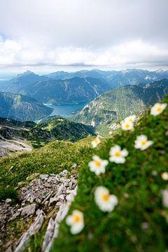 Bloemrijk uitzicht op de Plansee van Leo Schindzielorz