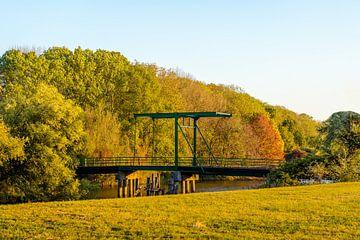 Zugbrücke im Niederländischen Nationalpark De Biesbosch von Ruud Morijn