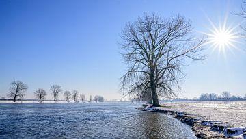 Stralende winterdag I van Jan Hoekstra