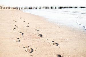 Voetstappen in het zand van Christel Verschuren