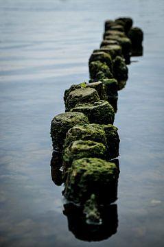 Pfähle im Wasser von Johan van Esch