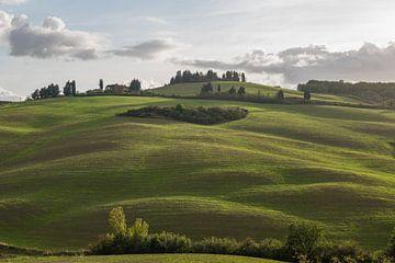 Die weichen Hügel der Toskana von Denis Feiner