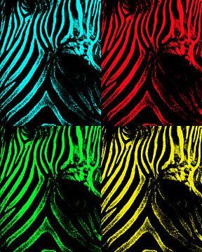 Zebra pop art von Dietjee FoTo