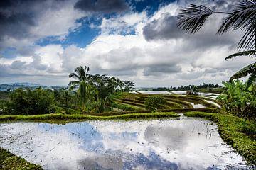 Spiegeling in de Jatiluwih rijstvelden Bali Indonesië van Juliette Laurant