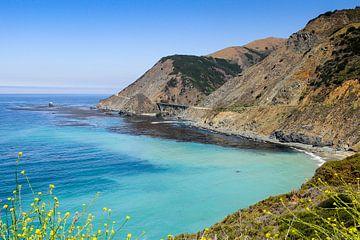 Pacific Coast Highway 1 van Roel Ovinge