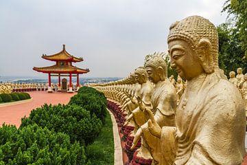 Duizend boeddha's van Erwin Blekkenhorst