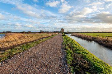 Polderlandschap met landweg en sloten van Ruud Morijn