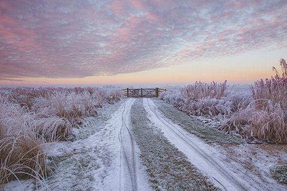 Zonsopkomst in een nevelig landschap bij IJlst in Friesland. Wout Kok One2expose Photography.