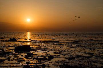 Sonnenuntergang am Schlammloch von Janneke Masselink
