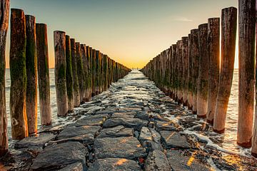 Houten palen in zee en op strand in Zeeland. van Ron van der Stappen