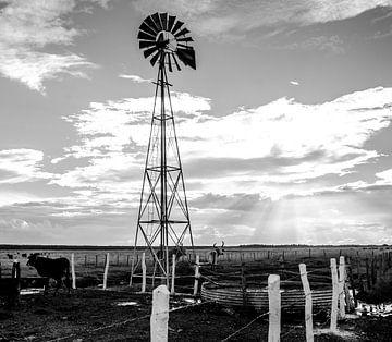 Windmill - Cuba von Annemarie Winkelhagen