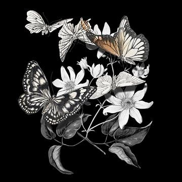 Paper Butterfly Magic