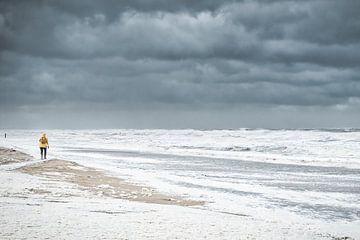 Sturm und Strand von eric van der eijk