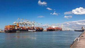 Containerterminal in de haven van Rotterdam met 2 containerschepen van Rick van der Poorten