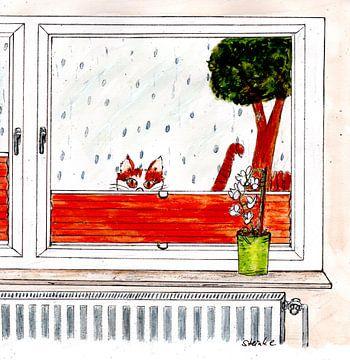 Katerwortel in de regen van Sandra Steinke